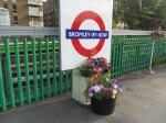 Flowers At Bromley-by-Bow Station