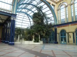 In the Palm Court at Alexandra Palace
