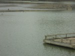 East India Dock Basin