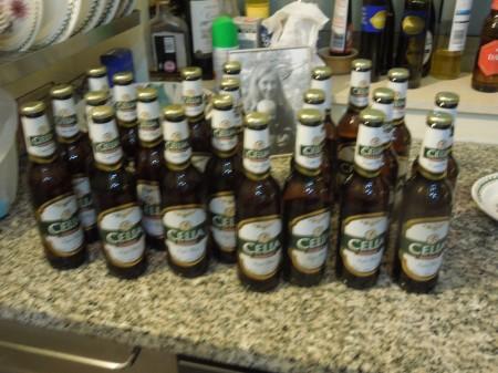 Twenty Three Celias