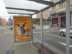 A Tram Stop With No Information