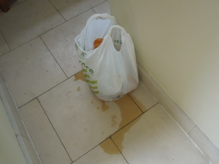 A Rubbish Bag Failure
