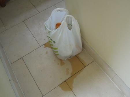 A Rubbish Bag Failure