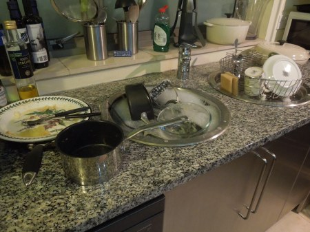 Too Much Washing Up!
