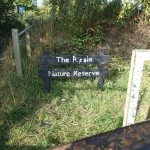 The Ripple Nature Reserve