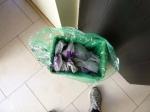 My Recycling Bin Full OfPackaging