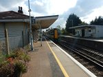 My Class 377 Leaves
