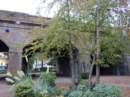 The North London Line Crosses Camden Gardens