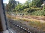 Between Canonbury Station And Highbury Grove