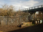 The Chingford Branch Crosses Over