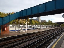 A RAT Sighted At Acton Town Station